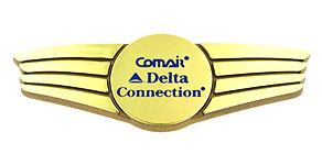 Comair Comair Delta Connection Wings