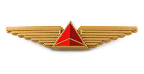 Delta Air Lines Wings (gold)