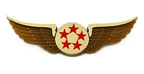 Five Star Airlines Wings