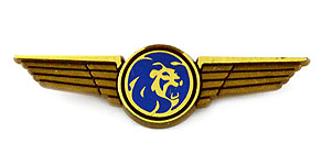 MGM Grand Air Wings