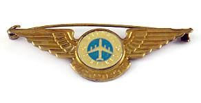 National Airlines Junior Pilot Wings