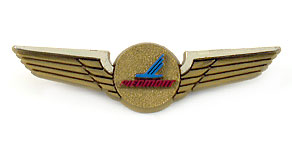 Piedmont Airlines Wings