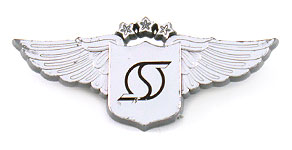 Southern Air Transport Wings